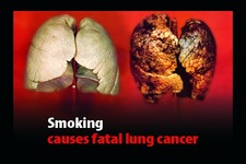 Concept Carcinogens and Cancer