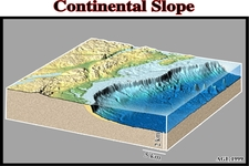 Concept Continental Margins
