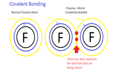 Concept Covalent Bonding