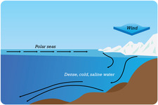 Concept Deep Ocean Currents