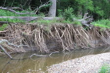Concept Erosion by Streams