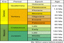 Concept Geologic Time Scale