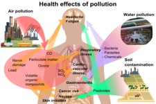 Concept Health Hazards of Air Pollution