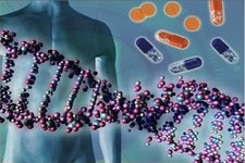 Concept Human Genetics and Biotechnology