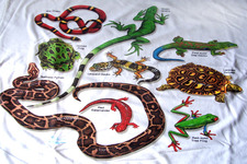 Concept Importance of Reptiles