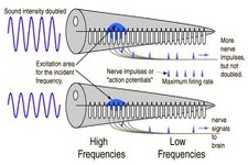 Concept Intensity and Loudness of Sound