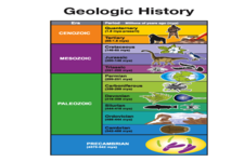 Concept Life and the Geologic Time Scale