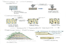 Concept Lithification of Sedimentary Rocks