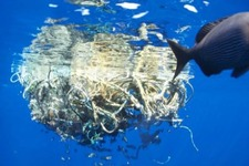 Concept Ocean Garbage Patch