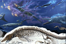 Concept Paleozoic and Mesozoic Seas