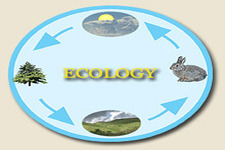 Concept Principles of Ecology