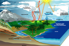 Concept Processes of the Water Cycle