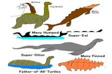 Concept Reptile Classification