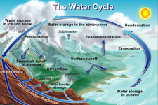 Concept States of Water