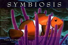 Concept Symbiosis
