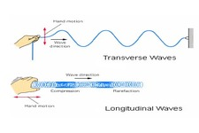 Concept Transverse Wave