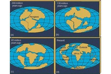 Concept Wegener and the Continental Drift Hypothesis